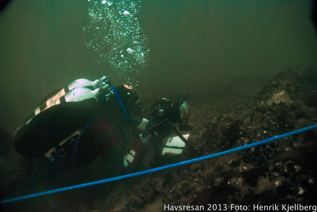 Undervattensfotografering pågår